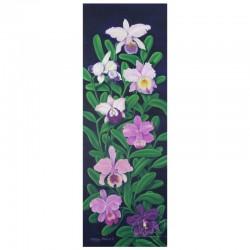 Orchidées - 1
